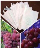La frutta impermeabile personalizzata formato della carta kraft Coltiva il sacchetto di protezione dell'uva