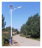 Luz de rua do diodo emissor de luz do preço de fábrica 6m com a lâmpada do diodo emissor de luz IP65