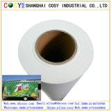 Etiqueta engomada auta-adhesivo del vinilo del PVC de la película del vinilo del PVC