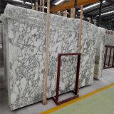 Мрамор Arabescato профессионального международного стандарта белый с минимальной ценой