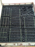 HDPEの水産養殖のカキ袋
