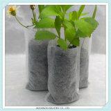Crescente sacchetto della scuola materna della pianta del commercio all'ingrosso del sacchetto ritenuto giardino domestico