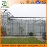Verwendeter Aluminiumrahmen-Polycarbonat-Gewächshaus-beträchtlicher Handelspreis