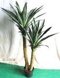 Piante e fiori artificiali di agave Attenuata (GU-JF647)