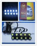 DRL12 5 LED X 2 (세륨)
