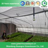 中国の農業の野菜花のプラスチックフィルムの温室
