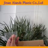 Прозрачный акриловый лист Acrilico листа