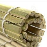 대나무 물자에 있는 녹색 초밥 매트