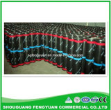 Sbs Modified Bituminous Waterproof membrane for Roof