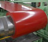 Rouleau laminé à froid Revêtue Galvalume en acier Revêtement en toit PPGL Steel Coil