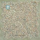 Mattonelle di pietra naturali dentellare del giardino per la pavimentazione del giardino