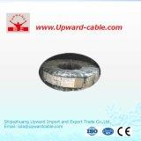 Fil électrique isolé par PVC de cuivre de conducteur de la BV