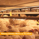 Equipamento automático de controle de aves de capoeira para frango de frango