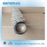 Grande magnete potente di Permanet NdFeB dell'anello per il motore, Clutche, coppia