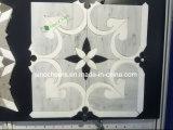 Плитка мозаики отполированной и флористической конструкции итальянского мрамора Carrara белого, белизна, Samp