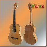 39 & rdquor; Pizarra Araucaria Plywood Guitarra Clásica