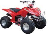 110cc QUAD/ATV con CE (FST-110)