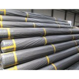 20-1200kn/M Verpackungs-strickendes Polyester-Haustier Geogrid