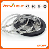 Impermeable 24V Multicolor LED Light Strip para clubes nocturnos