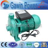 Pompa centrifuga di vendita di serie calda di Dtm con la ventola d'ottone per uso di agricoltura