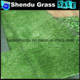 10mmの低質の庭の人工的な草