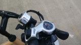 48V 500W 최신 판매 바닷가 비에 있는 페달 E 자전거를 가진 전기 산악 자전거 자동차