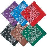 Bandana magique multifonctionnelle de mouchoir Paisley de mode (B-NF20F19005)