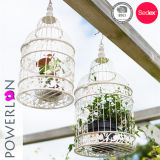 Supporto di candela decorativo Wedding del Birdcage del ferro saldato