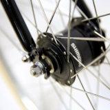 2017 새로운 형식 안 7gear 크롬 Moly는 자전거를 탄다 남녀 공통 도시 자전거 (CTB16)를
