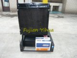 ¡Buen precio! Generador del diesel de Yangdong