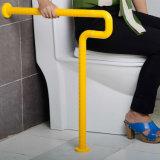 Antibacteriële Vloer - de opgezette Staven van de Greep van de Handicap