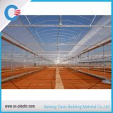 ポリカーボネート空シートの温室の屋根ふきシート