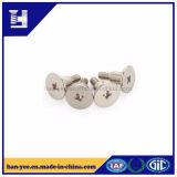 Boulons en acier inoxydable/Vis avec rondelle à tête plate
