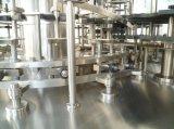 Ligne de production automatique de boisson pour bouteilles d'animaux domestiques