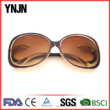Солнечные очки высокого качества конструкции Ynjn новые для женщин