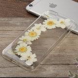 Реальное высушенное отжатое цветастое iPhone 7 аргументы за телефона цветков