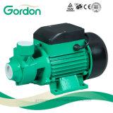 Pompe à eau périphérique domestique à eau chaude électrique avec raccord de tuyauterie