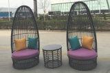 Tabella Furniture-106 esterno del rattan di svago