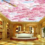 Bella pellicola stampata molle impermeabile del soffitto del PVC della decorazione interna