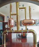 Het 2-schip van de micro- Apparatuur van het Bierbrouwen
