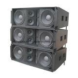 Ds212 à deux voies enceinte de line array Pro Audio