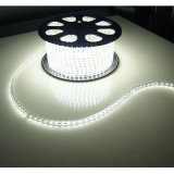 Luz de tira impermeable de IP65 SMD5050 LED para la decoración