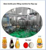 De automatische Lopende band van het Appelsap van de Mango van het Verse Fruit Voor de Fles van het Glas