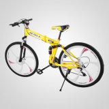 """montagna piegante 26 """" 21-Speed che attenua la bicicletta della bici"""