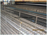 Vetroresina ad alta resistenza Geogrid del rivestimento dell'asfalto della portata di lunga vita