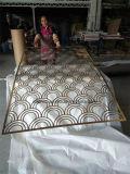 Écran intérieur en acier inoxydable décoratif avec cadre