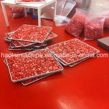 Vakuumnahrungsmittelfrost Trockner-Frucht Frost-trocknendes Gerät für Nahrungsmitteldas aufbereiten