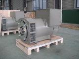 Generador sin cepillo del kilovatio /200kVA de la alta calidad 160 con el Ce (JDG274H)