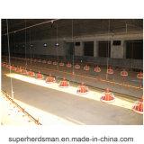 Matériel de ferme avicole de taux de grilleur qualifié par ISO9001 d'usine