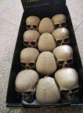Plastica dello scheletro 100% di Halloween formato adulto dell'elevatore da 5 FT che appende scheletro umano per la decorazione di Halloween